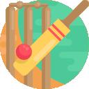 cricket(2)